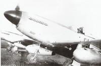 North American P-51D, 301st Fighter Squadron - S/Sgt. R. Gray, Crew Chief - Ramitelli Aerodrome, Termoli, Italy - 1944