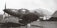 P-39Q Airacobra, 332nd Fighter Group, Montecorvino Aerodrome, Salerno, Italy - 1944