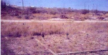 Westlawn Cemetery, Del Rio, Texas - Before