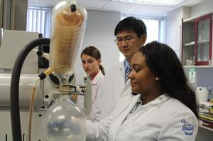 Dr. Feng Li, Assistant Professor of Pharmacy, and students working on drug delivery and nanomaterial.